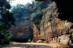 Peregrine cliff